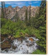 The Hike Down Wood Print