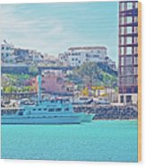 The Hill In Puerto Penasco In Sonora-mexico   Wood Print