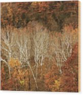 The Hills In Autumn Wood Print