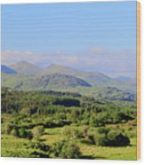 The Hills Of Southern Ireland Wood Print