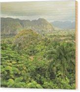 The Hills Of Vinales Wood Print