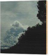 The Hillside Wood Print