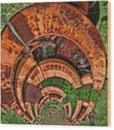 The Hitchhiker Wood Print by Wendy J St Christopher