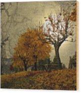 The Holder Of Light Wood Print