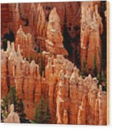 The Hoodoos In Bryce Canyon Wood Print