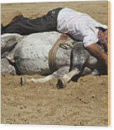 The Horse Whisperer Wood Print