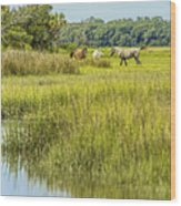 The Horses Of Cumberland Island Wood Print