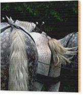 The Horses Of Mackinac Island Michigan 04 Wood Print