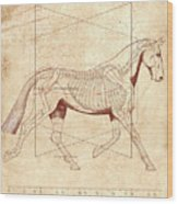 The Horse's Trot Revealed Wood Print