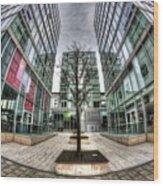 The Hub Milton Keynes Wood Print