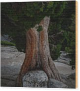 The Hug Wood Print