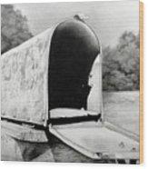 The Humble Mailbox Wood Print