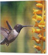 The Hummingbird And The Bee Wood Print