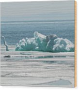The Ice Elephant Of Silver Islet Wood Print
