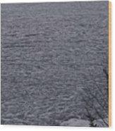 The Ice Float Wood Print