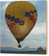 The Impressionable Balloon Wood Print