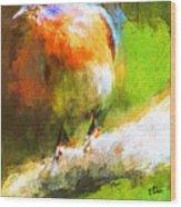 The Impressive Bluebird Wood Print