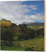 The Inca-canari Ruins At Ingapirca V Wood Print