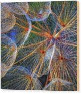 The Inner Weed 2 Oil Wood Print