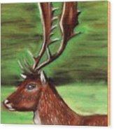 The Irish Deer Wood Print