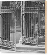 The Iron Gates Wood Print