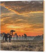 The Iron Horse 517 Sunrise Wood Print