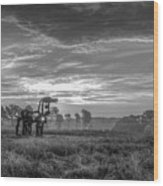 The Iron Horse A New Dawn 7 Wood Print