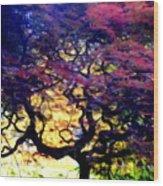 The Japanese Maple Wood Print