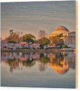 The Jefferson Memorial And Cherry Trees In Bloom Wood Print