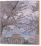The Jefferson Memorial Attracts Large Crowds At The Cherry Blossom Festival Wood Print