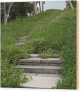 The Journey Secret Steps Wood Print