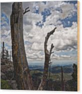 The Journey To Harney Peak Wood Print