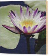 The Joy Of Purple Wood Print