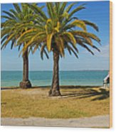 The Joy Of Sea And Palms Wood Print