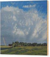 The June Rains Have Passed Wood Print