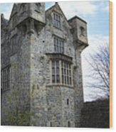 The Keep At Donegal Castle Ireland Wood Print