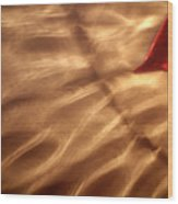 The Kiss Of The Sun Wood Print