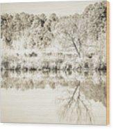 The Lake #47 Wood Print