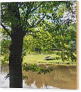 The Lake In The Park Wood Print