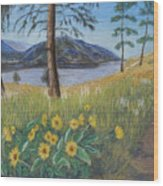The Lake Trail Wood Print