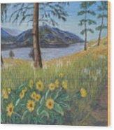 The Lake Trail Wood Print