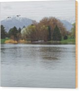 The Lake View  Wood Print