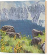 The Land Of Chief Joseph Wood Print