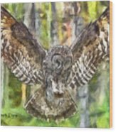 The Largest Owl Wood Print
