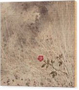 The Last Blossom Wood Print
