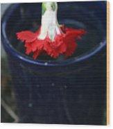 The Last Carnation Wood Print