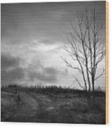 The Last Dawn - Grayscale Wood Print