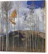 The Last Hurrah Wood Print