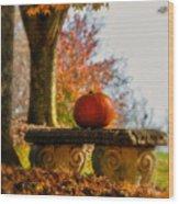 The Last Pumpkin Wood Print