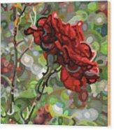 The Last Rose Of Summer Wood Print